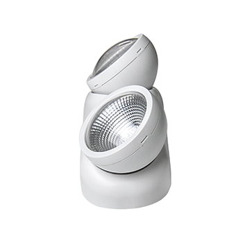 Twin Head LED Emergency Light